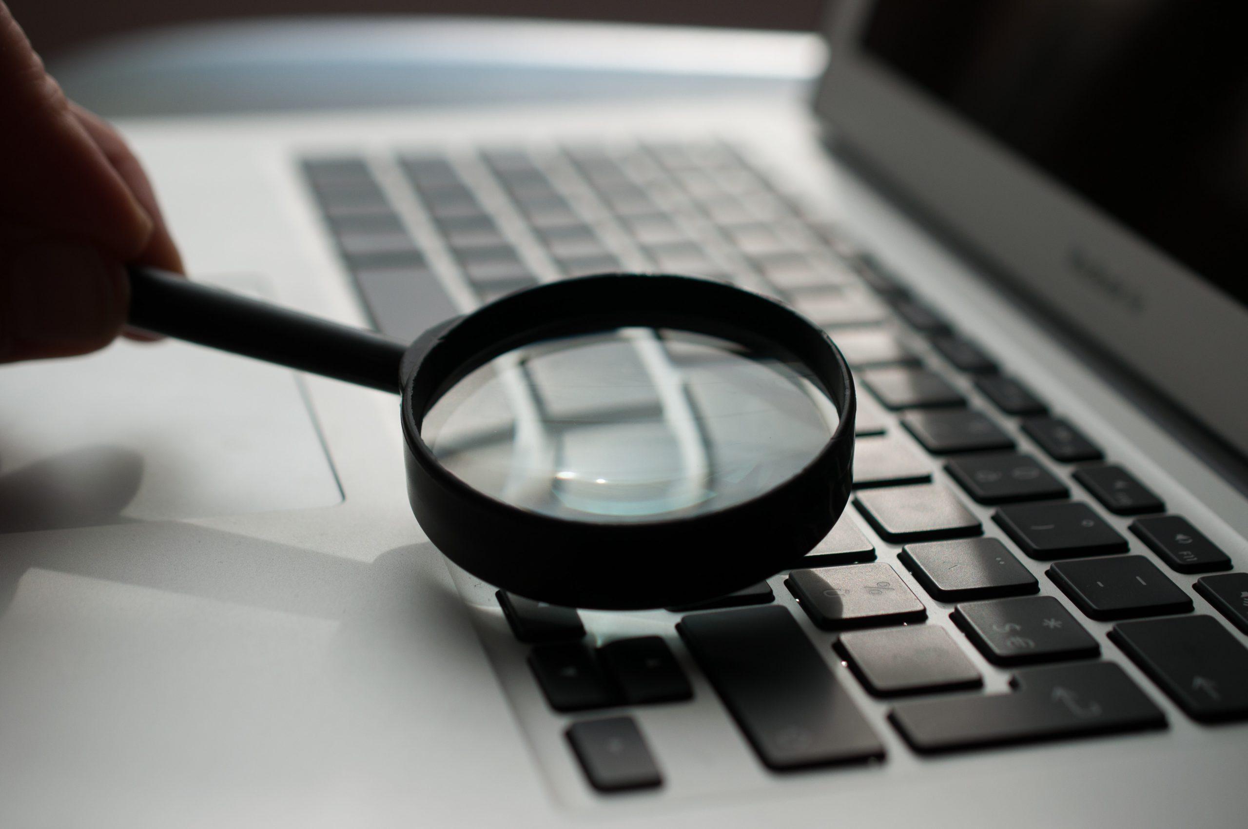 searchandising